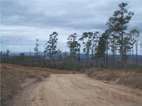 Carretera de entrada a Swazilandia