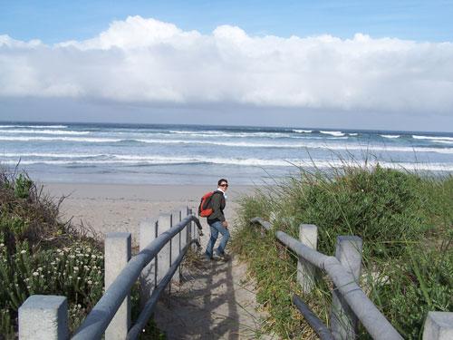 Camino de la playa (Hermanus)