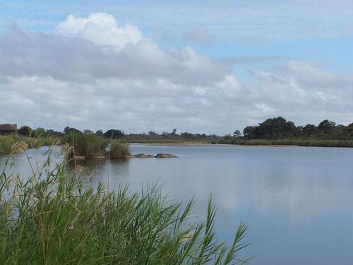 Kruger_Park (rio)