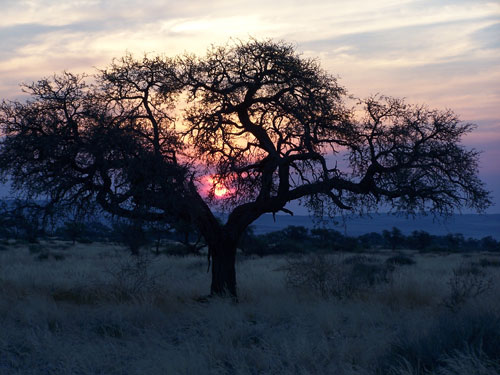 Atardecer en el Namib