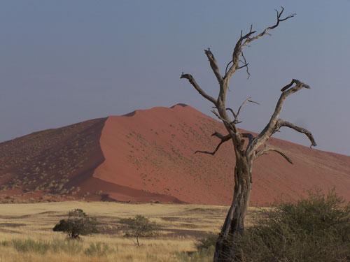Dunas de Sossuvslei (Namibia)