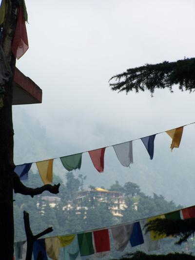 Banderas tibetanas en McLeodGanj