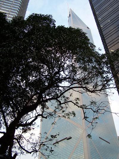 Rascacielos en Hong Kong