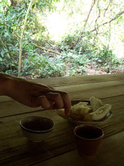 Comiendo mandioca (tapioca) en Cu Chi
