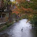 Los misterios de Kyoto