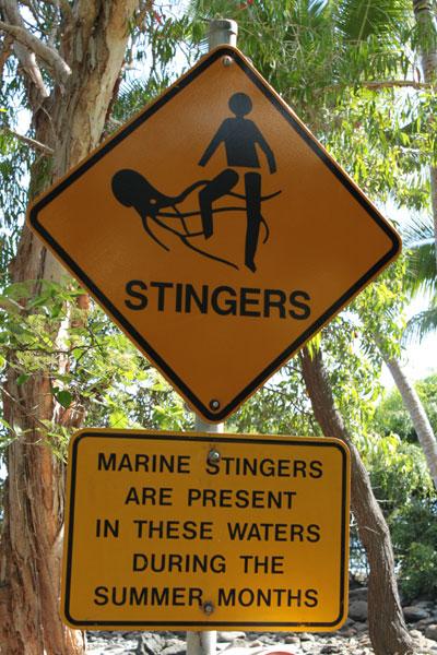 Cartel advirtiendo sobre las medusas asesinas