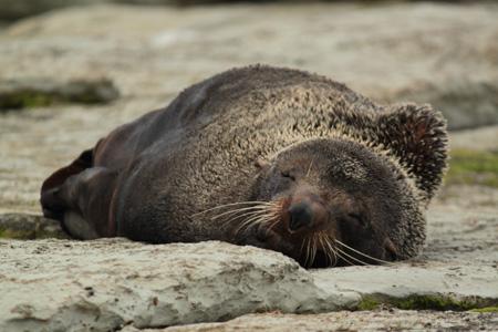 Descansando después de la pesca