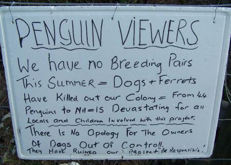 Pingüinos exterminados por perros y hurones