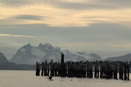 Bahía de Puerto Natales