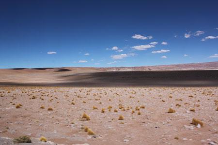 Atravesando el desierto
