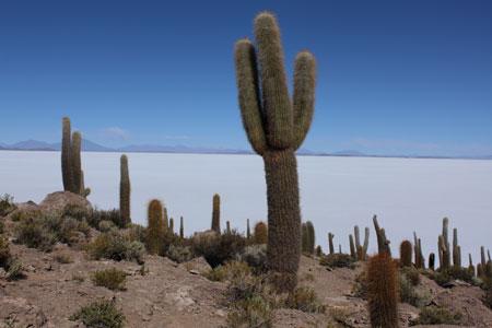 Isla de coral de Incahuasi