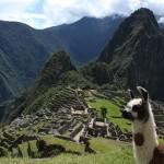 El timo del tren a Machu Picchu