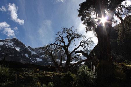 Brilla el sol en la Cordillera Blanca