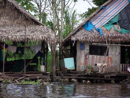 Vecinos en el río